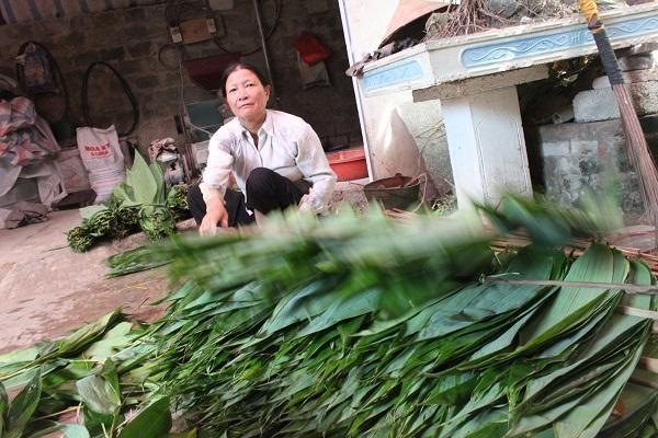 Lá tre sau khi thu hái sẽ được xử lý, làm khô và được xuất khẩu sang Đài Loan dùng gói bánh cổ truyền.