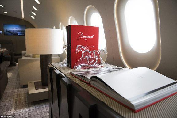 Chuyến bay trong mơ với giá gần 600 triệu đồng/giờ bay - 13