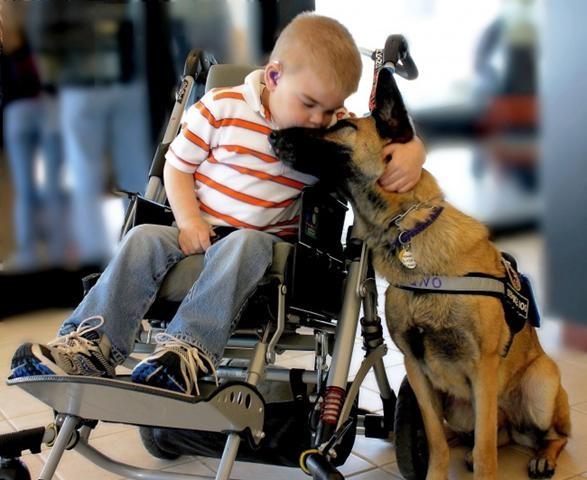 Cậu bé mắc hội chứng Sanfilippo âu yếm hôn chú chó của mình