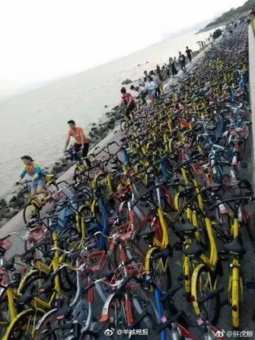 Vạn xe đạp chen nhau không lối thoát ở Trung Quốc - 5