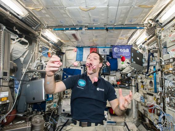 Những bức ảnh ngộ nghĩnh về cuộc sống của các phi hành gia trong không gian - 14