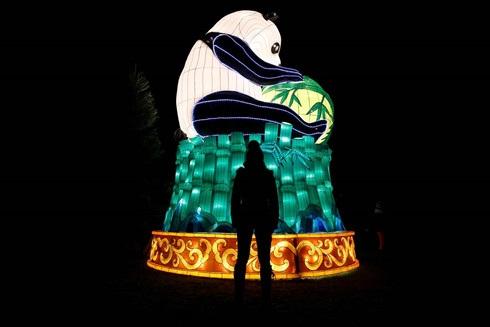 Ở châu Âu, Anh có lẽ là nước ăn Tết lớn nhất với nhiều hoạt động. Ngày 18/1 vừa qua thủ đô London của Anh đã tổ chức một Lễ hội đèn lồng để đón năm mới theo lịch âm.