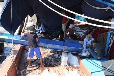 Dây chuyền xay đá phục vụ đánh bắt hải sản của ngư dân Quỳnh Lưu (Nghệ An).