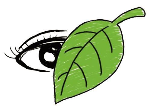 Thành tích như chiếc lá che mắt nhiều bậc phụ huynh…