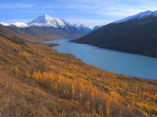 20 bức ảnh quyến rũ bạn đến Alaska - 3