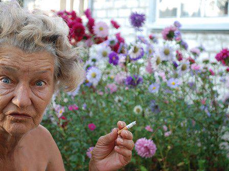 Đỏ chín mặt với kiểu làm vườn không mặc gì - 3