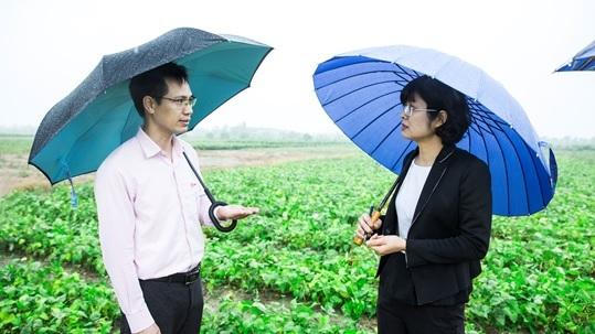 Bà Nguyễn Lam Giang - GĐ Tổ chức Helvetas Việt Nam và Ông Phạm Văn Đông – GĐ Công ty Nam Dược tại vùng trồng đậu nành theo tiêu chuẩn GACP - WHO đầu tiên của Việt Nam