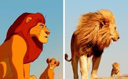 """Hai bố con Mufasa và Simba trong """"Vua sư tử"""" cũng đã được lấy cảm hứng từ chính thực tế"""
