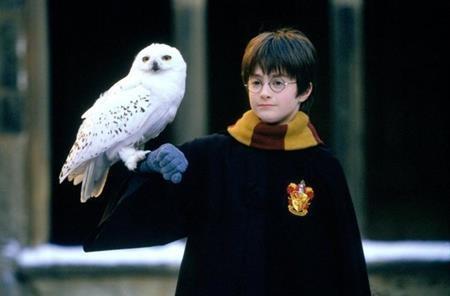 Tên tuổi của Daniel Radcliffe luôn gắn liền với vai diễn cậu bé phù thủy Harry Potter trong loạt phim đình đám cùng tên. Đáng yêu, dũng cảm, gần gũi, Harry Potter của Daniel Radcliffe quả thực như bước ra từ trong những trang sách mà J.K. Rowling miêu tả.