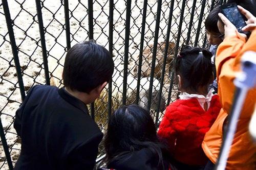 Địa điểm vui chơi thu hút khá nhiều em nhỏ bởi những lồng nuôi thú.