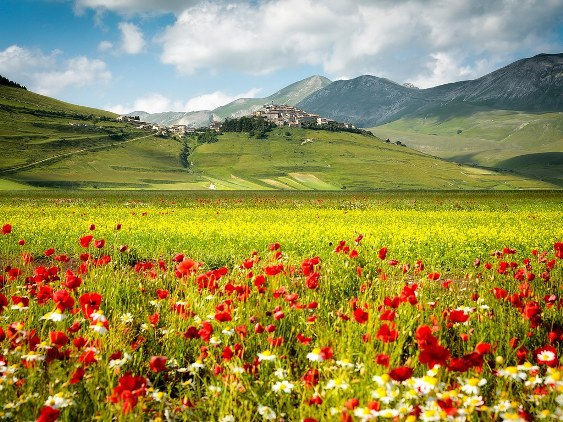 10 thị trấn nhỏ xinh đẹp của nước Ý - 4