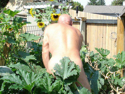 Đỏ chín mặt với kiểu làm vườn không mặc gì - 4