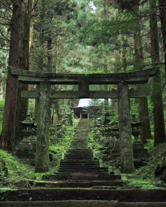 Không gian sống ở Nhật rất xanh và trong lành.