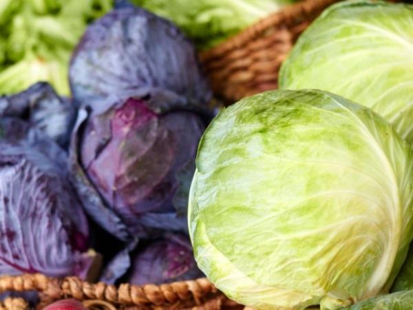 18 loại thực phẩm giàu vitamin K - 5