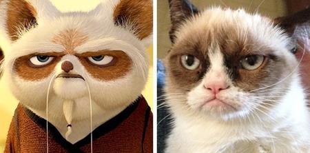 """Sư phụ Shifu trong """"Công phu gấu trúc"""" hóa ra có một bản sao ngoài đời"""