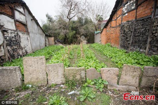 Bia mộ còn được dùng làm hàng rào