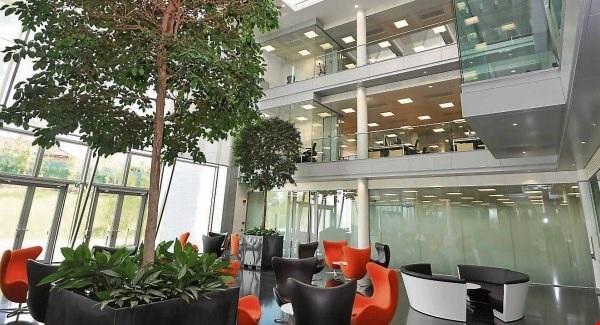 """Không gian bên trong trụ sở Apple tại Cork, Ireland, mệnh danh là """"trái tim châu Âu"""" của Apple, hiện có hơn 4000 nhân công và có kế hoạch tuyển thêm 1000 nhân lực nữa trong năm tới."""