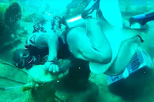 Hãi hùng cảnh thợ lặn bị cá mập cắn vào chỗ hiểm - 2