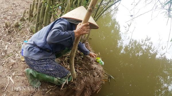 Công việc săn, bắt cáy của bà con Kim Sơn diễn ra từ đầu hè cho đến hết mùa thu.