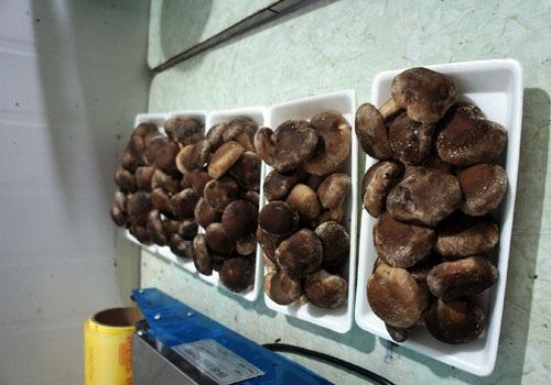 Hiện nay, tổng sản lượng nấm tươi của Minakami đạt khoảng 60 tấn mỗi năm.