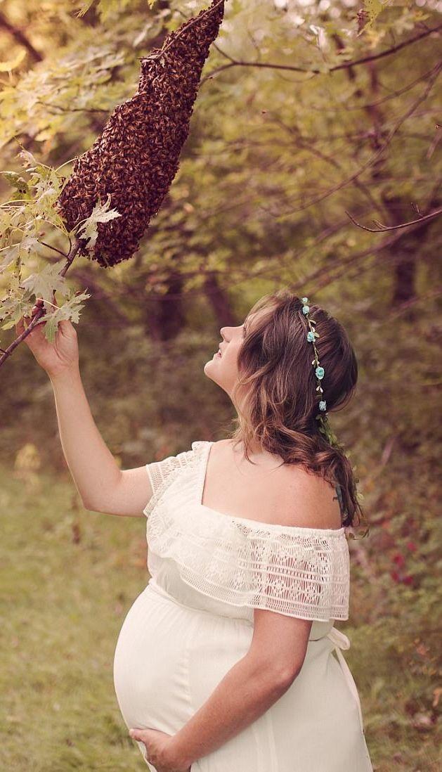 Ngắm nghía tổ ong trên cành cây