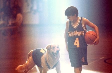 """Xoay quanh một chú chó đáng yêu có khả năng chơi bóng rổ ấn tượng, """"Air Bud"""" nhanh chóng gây được ấn tượng với cốt truyện bất ngờ cùng các nhân vật đáng yêu và gây """"sốt"""" cho các rạp chiếu hồi mùa hè năm 1997."""