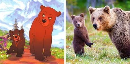 Anh em nhà gấu Kenai và Koda phiên bản đời thực vẫn vô cùng đáng yêu