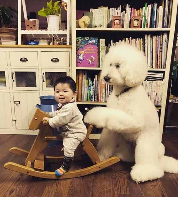 Mame cưỡi ngựa gỗ còn Riku rất tâm lý đứng đẩy