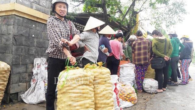 Cảnh mua bán hồng không hạt nhộn nhịp ở xã Nam Anh, Nam Đàn, Nghệ An. Ảnh: Lê Tập