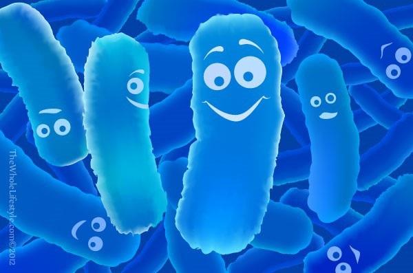 Probiotic có thể giúp ngăn ngừa trầm cảm - 1