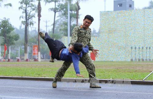 Các chiến sỹ Đặc công biểu diễn võ thuật tại buổi lễ