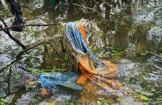 Những tấm bạt lớn bìu ríu lấy những cành bần gầy guộc
