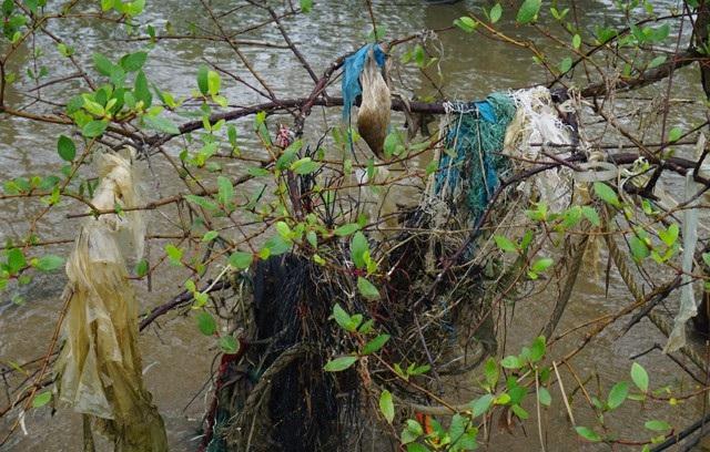 Những búi rác chằng chịt, níu cành bần trĩu xuống nước