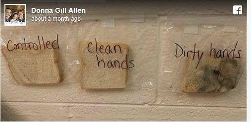 Xem những hình ảnh này, bạn sẽ luôn nhớ rửa tay trước khi ăn - 1