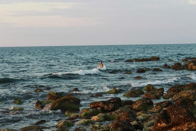 Hệ sinh thái biển tại đảo Cồn Cỏ khá đa dạng
