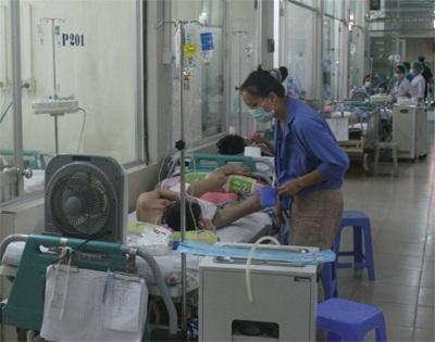 Căn bệnh muỗi truyền trong mùa hè đã khiến 8 người tử vong - 1