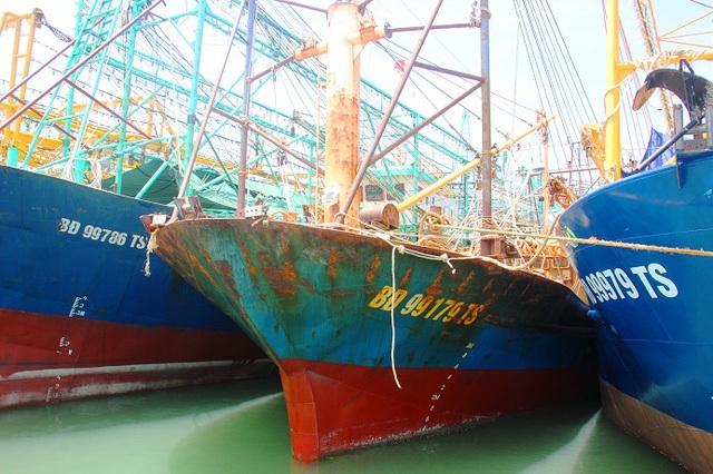 Thả nổi cho nhập khẩu ô tô: Câu chuyện buồn nhìn từ 18 tàu vỏ thép tiền tỷ nằm bờ - 1