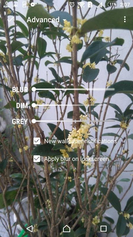 Tự động thay đổi hình nền trên smartphone để màn hình sinh động và thú vị hơn - 8