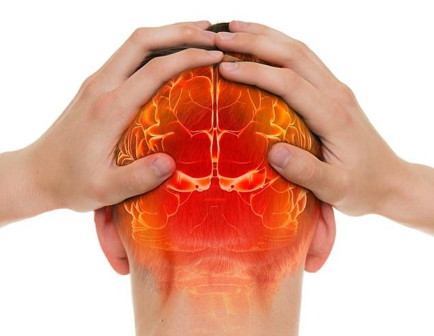 Các phát hiện gợi ý rằng con người phát triển bộ não lớn hơn là nhờ tìm kiếm thức ăn.