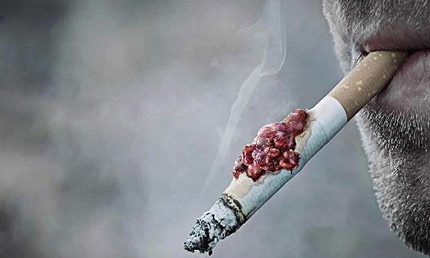 Khói thuốc với hơn 7000 chất độc gây hại cho sức khỏe người hút và người hít phải khói thuốc. Tỷ lệ hút thuốc lá người Việt đã giảm xuống, nhưng vẫn nằm trong top 15 nước có tỷ lệ hút thuốc lá cao nhất thế giới.