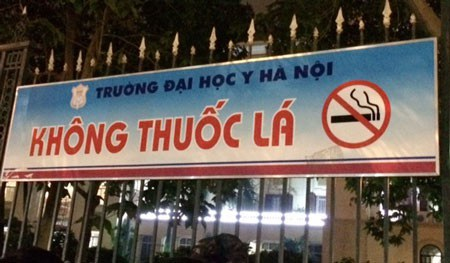 Việt Nam đã xây dựng thành công nhiều mô hình không khói thuốc, như thành phố du lịch không khói thuốc, nhà hàng, cơ quan công sở, bệnh viện... không khói thuốc.