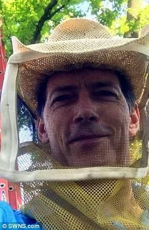 Mickey nói ông chưa bao giờ thấy tổ ong trong nhà nào lớn tới vậy.