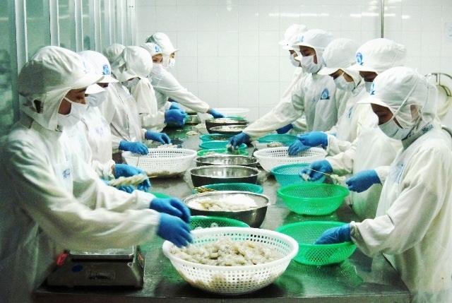 Thị trường tôm còn rất lớn và đó là thời cơ cho Việt Nam phát triển mạnh lĩnh vực này. (Ảnh minh họa)