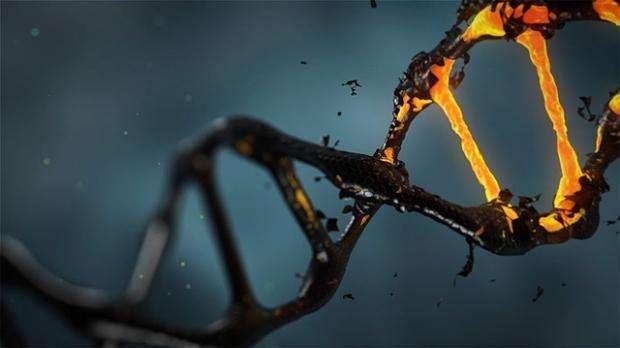 Trà làm thay đổi các gen liên quan đến nguy cơ ung thư ở phụ nữ - 1