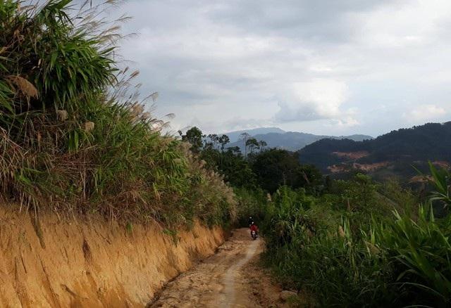 Đường đến trường men theo sườn núi, vẫn còn nguyên nét hoang sơ nhưng cũng không kém lãng mạn