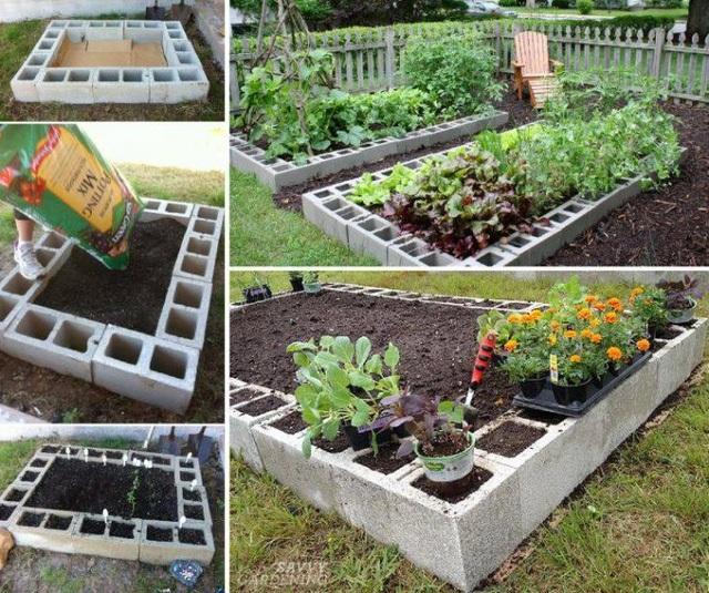 Rau sạch vườn nhà: Trồng cây lấy quả không hề khó - 1