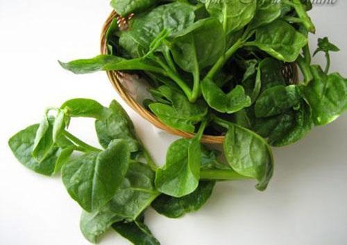 Rau sạch vườn nhà: Bí quyết trồng các loại rau nấu canh - 2