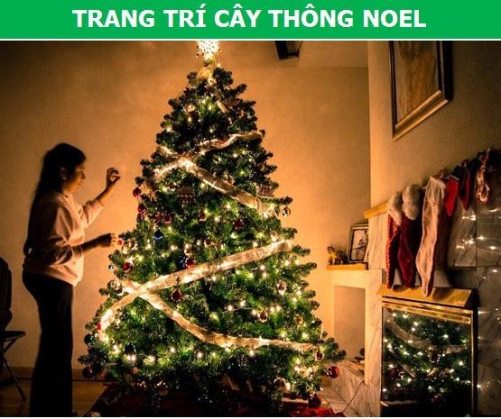 Tìm hiểu nguồn gốc lịch sử những nghi thức truyền thống ngày lễ Giáng Sinh - 3