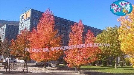 Khách sạn 4 sao Vatel - Trường Vatel là trường duy nhất tại Thụy Sĩ sở hữu riêng khách sạn 4 sao ngay tại trường để dùng vào mục đích đào tạo cho sinh viên trong trường
