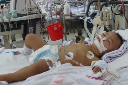 Viêm não Nhật Bản đang bắt đầu vào mùa, bệnh đã khiến nhiều trẻ nhập viện trong tình trạng nặng